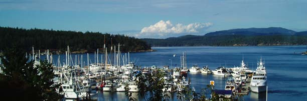 fridayharbor